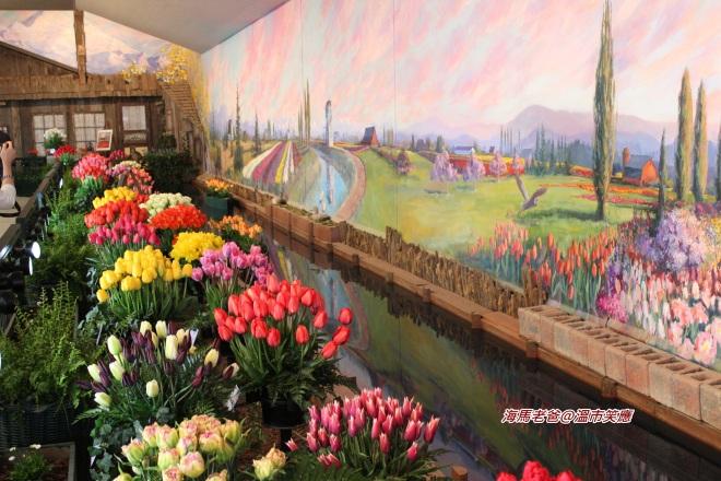 IMG_1430Skagit Valley Tulip Town