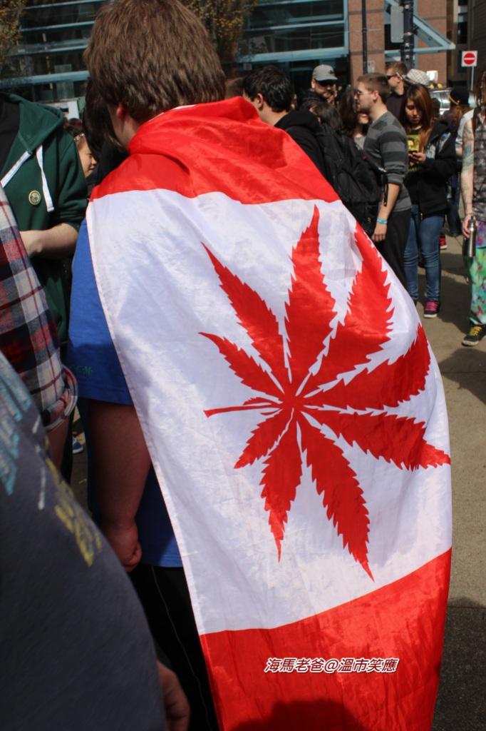 IMG_17342012大麻日