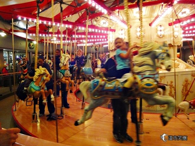 DSC09638Burnaby museum Xmas lights