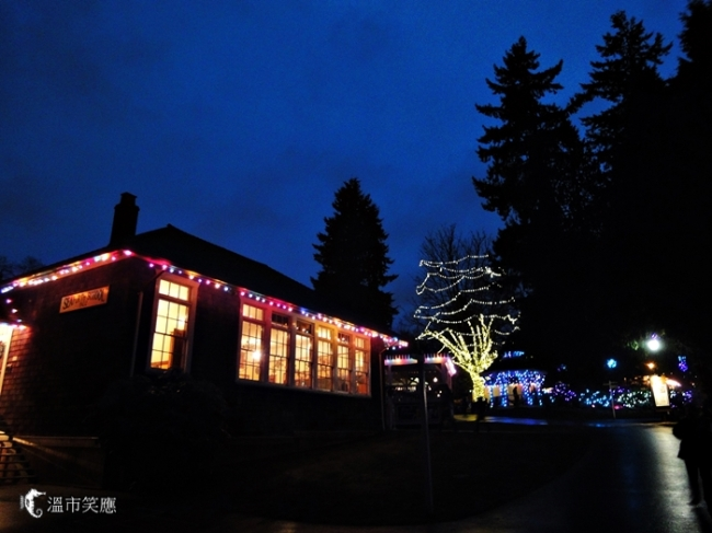 DSC09671Burnaby museum Xmas lights