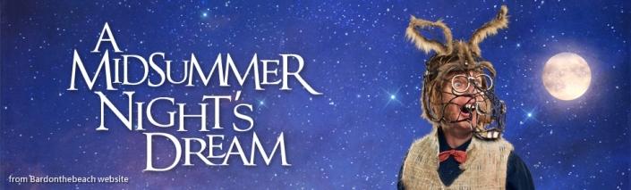 banner-dream-play