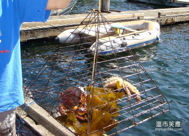 activityDSC07977-1crabfishing
