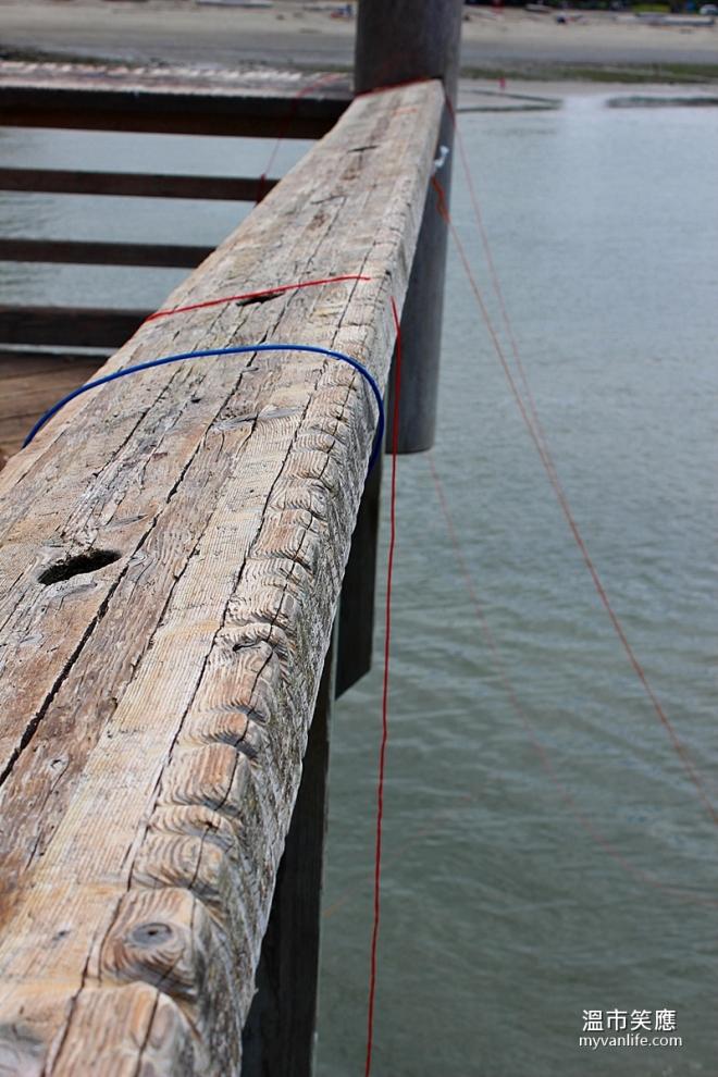 activityIMG_5015-11crabfishing