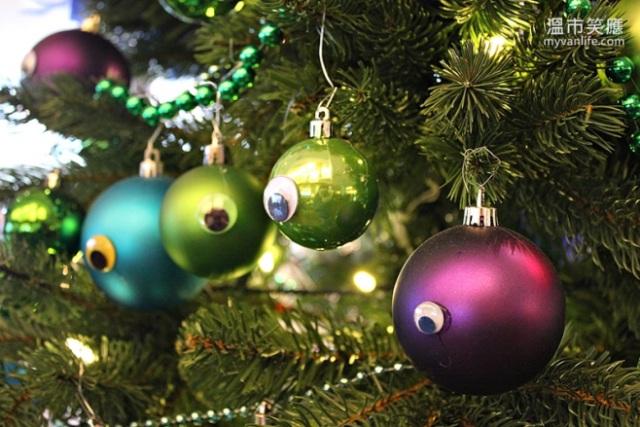 ChristmasRIMG_7288FourSeasonsTrees
