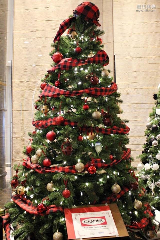 ChristmasRIMG_7308FourSeasonsTrees