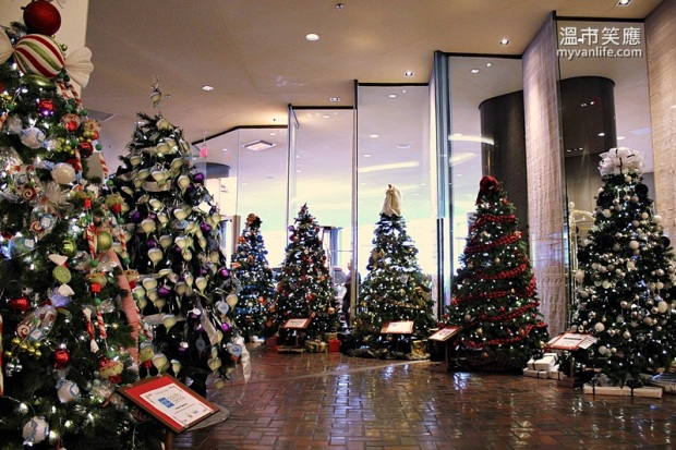 ChristmasRIMG_7337FourSeasonsTrees