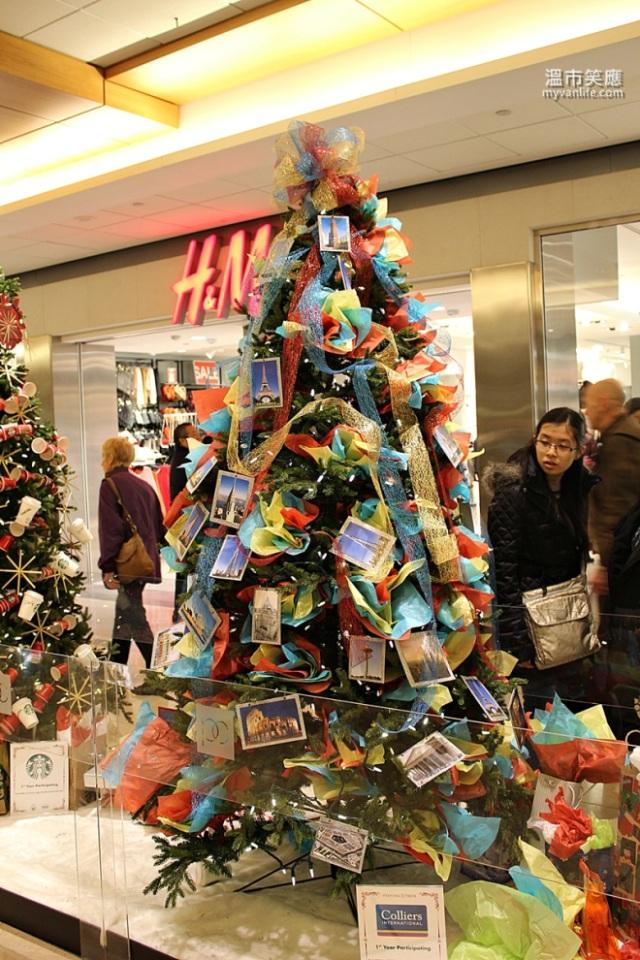 ChristmasRIMG_7362FourSeasonsTrees