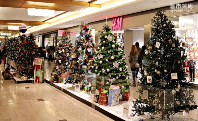 ChristmasRIMG_7390FourSeasonsTrees
