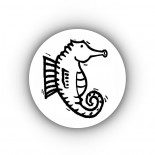 cropped-fat-belly-seahorse-in-circle.jpg